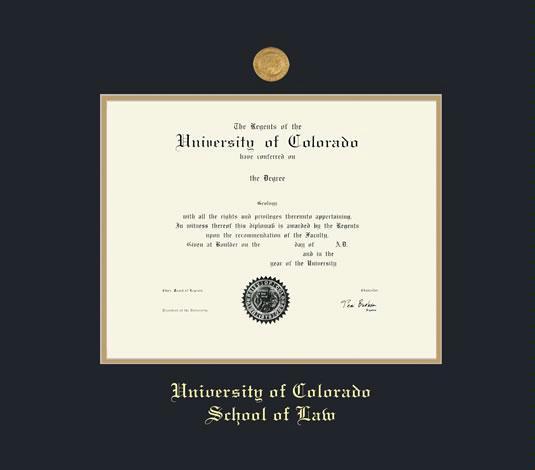 Custom Diploma Frames & Certificate Frames - Framing Success ...
