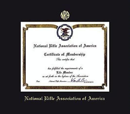 Custom Diploma Frames & Certificate Frames - Framing Success: NRA 8 ...