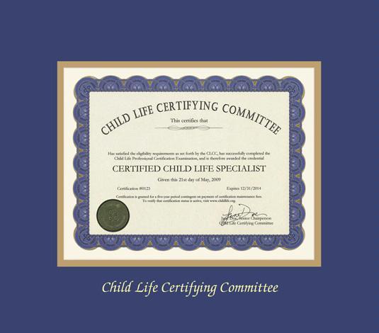 Custom Diploma Frames & Certificate Frames - Framing Success: Child ...