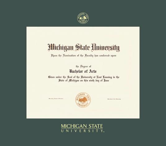 michigan state university phd diploma frame with green mat and gold embossing approximate frame size 19 x 22 inches - Diploma Frame Size