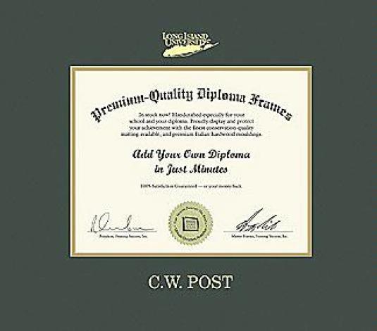 Custom Diploma Frames & Certificate Frames - Framing Success: LIU ...