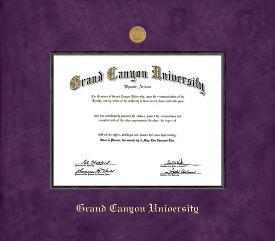 16 x 16 Signature Announcements Midwestern-University-IL Doctorate Sculpted Foil Seal Graduation Diploma Frame Gold Accent Gloss Mahogany