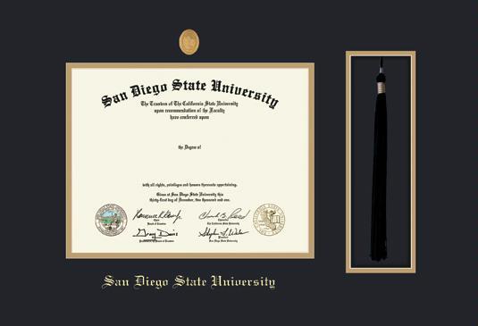 Custom Diploma Frames & Certificate Frames - Framing Success: SDSU ...