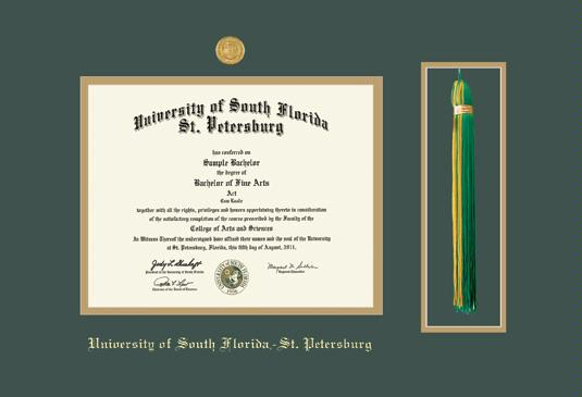 diploma ma 11 x 14 frame with medallion and tassel cut out and green and gold double mat and gold embossing approximate frame size 19 x 27