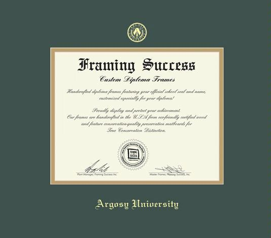 argosy university diploma doctorate frame with green and gold double mat and gold embossing approximate frame size 19 x 22 inches - Diploma Frames Cheap