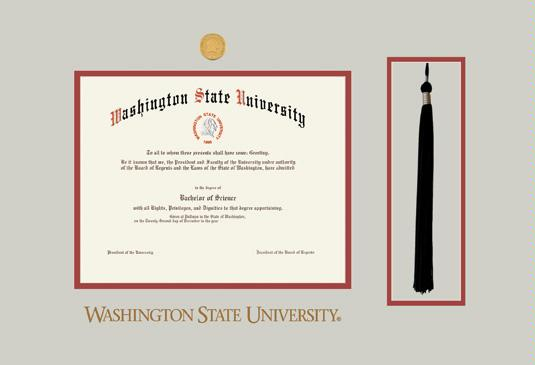 Custom Diploma Frames & Certificate Frames - Framing Success: WSU BA ...