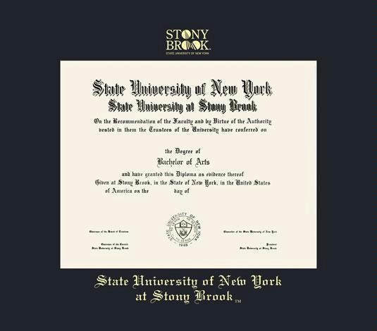 Stony brook university in state tuition-8945