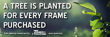 A tree is planted for every frame purchased