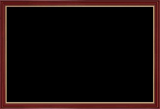 Custom Diploma Frames & Certificate Frames - Framing Success: Union ...