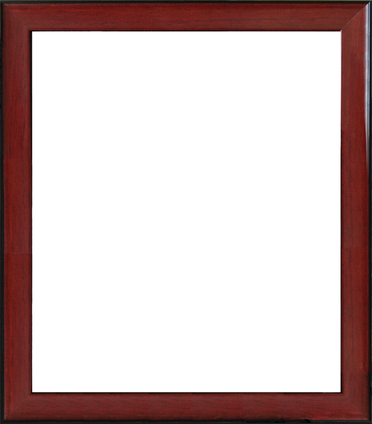 Custom Diploma Frames & Certificate Frames - Framing Success: USC ...